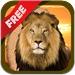 免费野生动物拼图照片 - 孩子和年幼的孩子孩子儿童游戏幼儿幼儿园学前班学龄前儿童免费2岁多13 4
