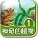神奇的植物①(植物常识篇)-BabyBooks