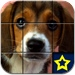 A Cute Puppy Puzzle Game Pro Version