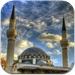 Find Mosque