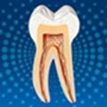 DentalAid