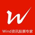 Wind资讯股票专家