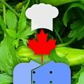 Canada: Wild Food