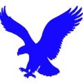 Eagle课程表